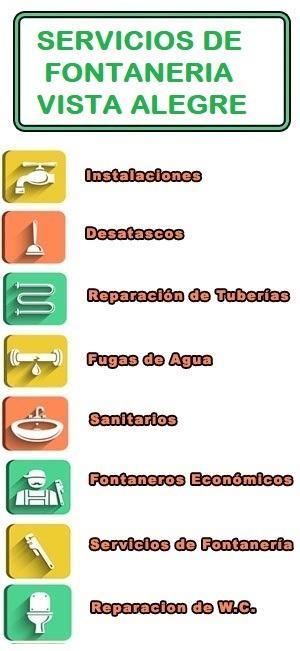 servicios de fontaneria en Vista Alegre
